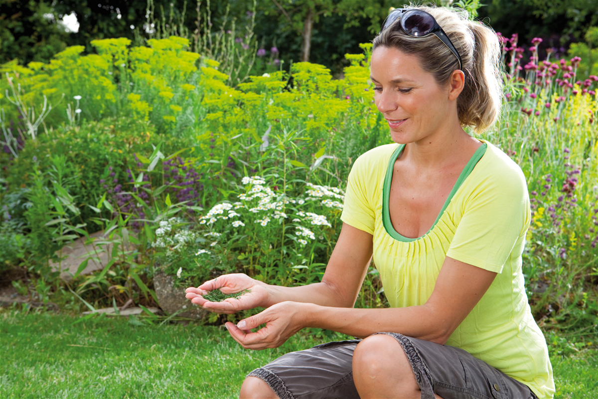 Rezultate excelente de tăiere - nu este nevoie să curăţaţi iarba tăiată